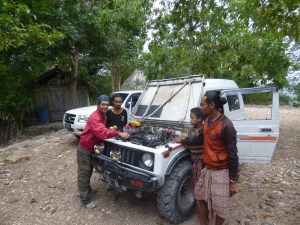 West Timor Jeep