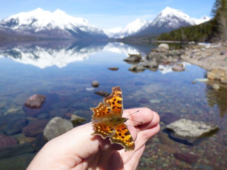 Glacier National Park in the Spring