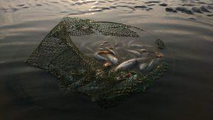follow Jesus, net with fish in murky water