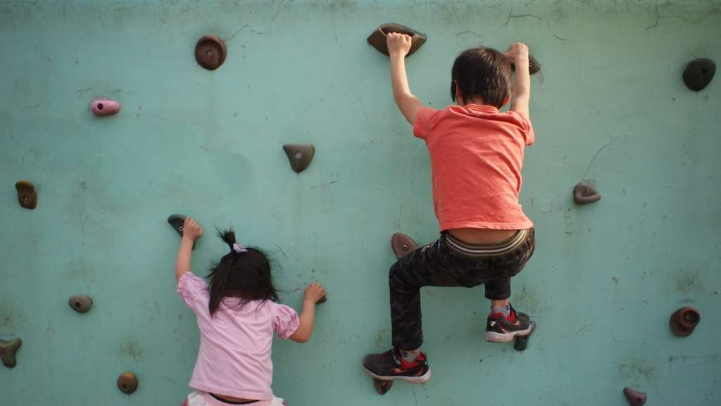 Backyard, climbing wall