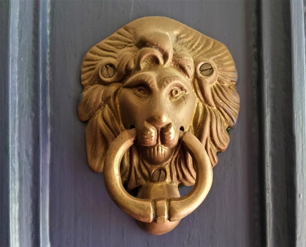 Door with knocker