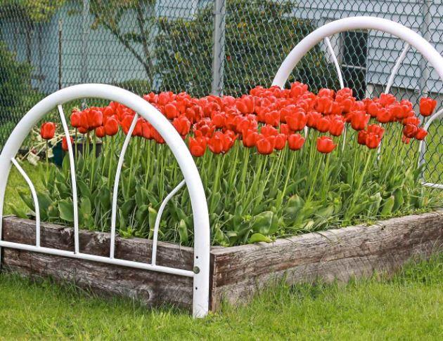 Metal bed frame, flower bed