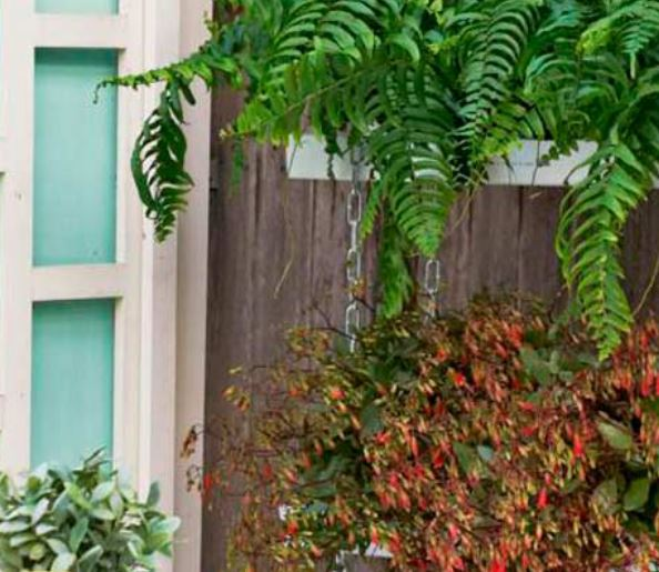 Planters, rain gutters