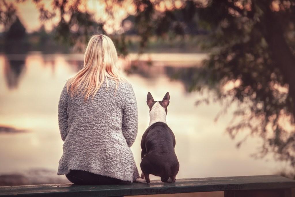 Health benefits, pet and depression