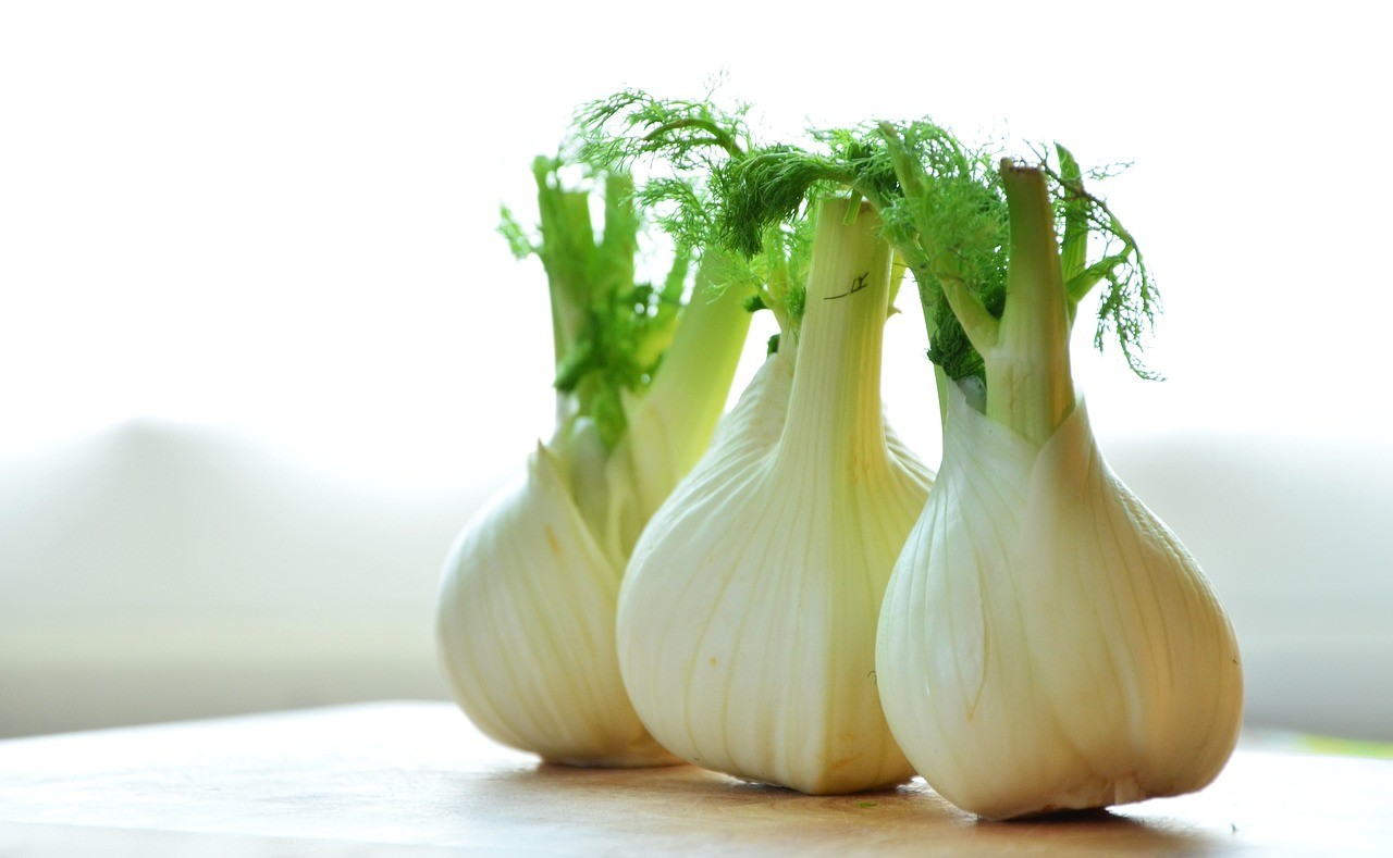 fennel, three bulbs countertop