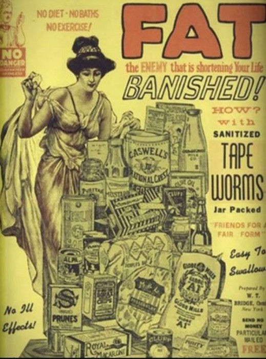 Diet Fads Tape worms -- The Hot Mess Press