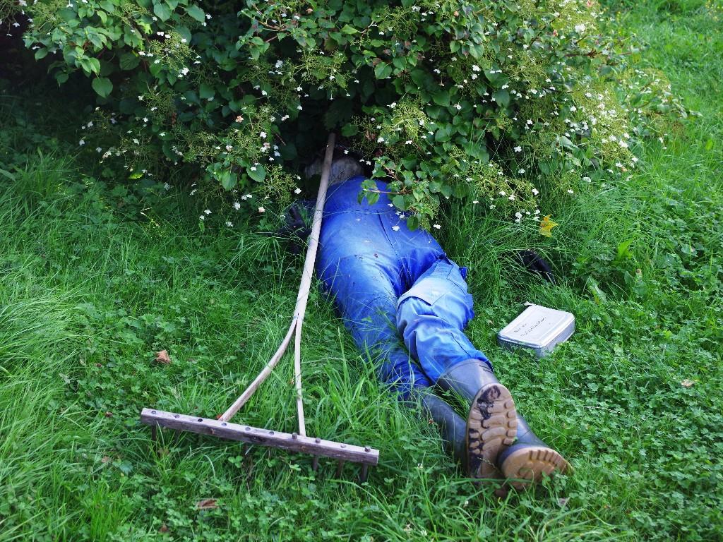 Man napping in garden