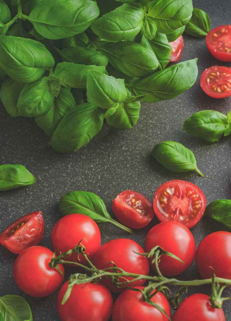 basil and tomatoes