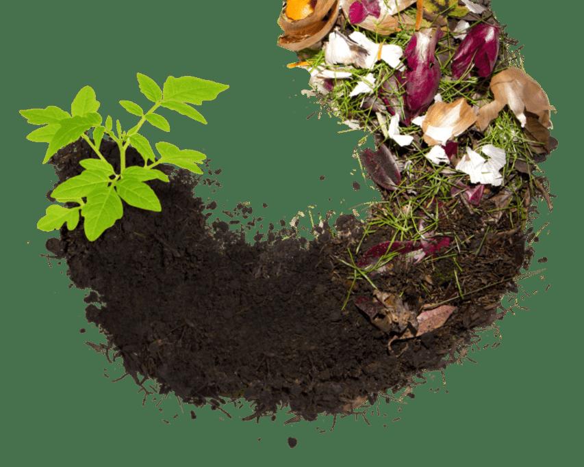 Compost process