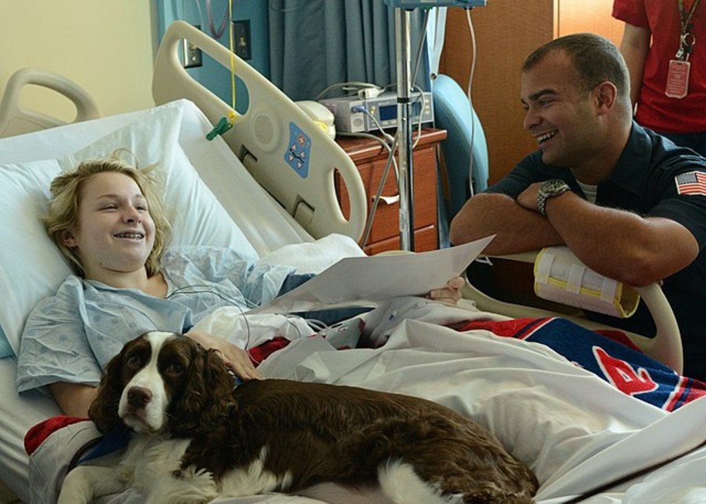 Therapy dog with hospital patient