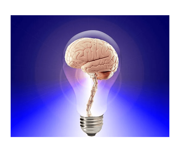 independent thinking, brain in a lightbulb