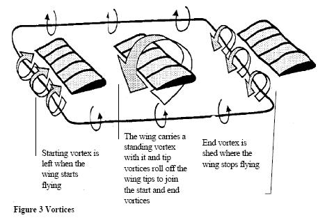 PARAGLIDER Flight Theory & Instruments Manual Guide