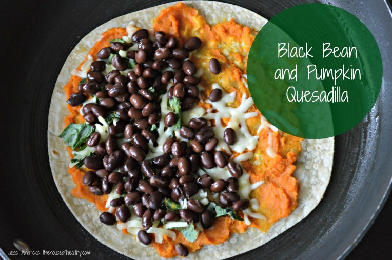 Black Bean Pumpkin Quesadilla