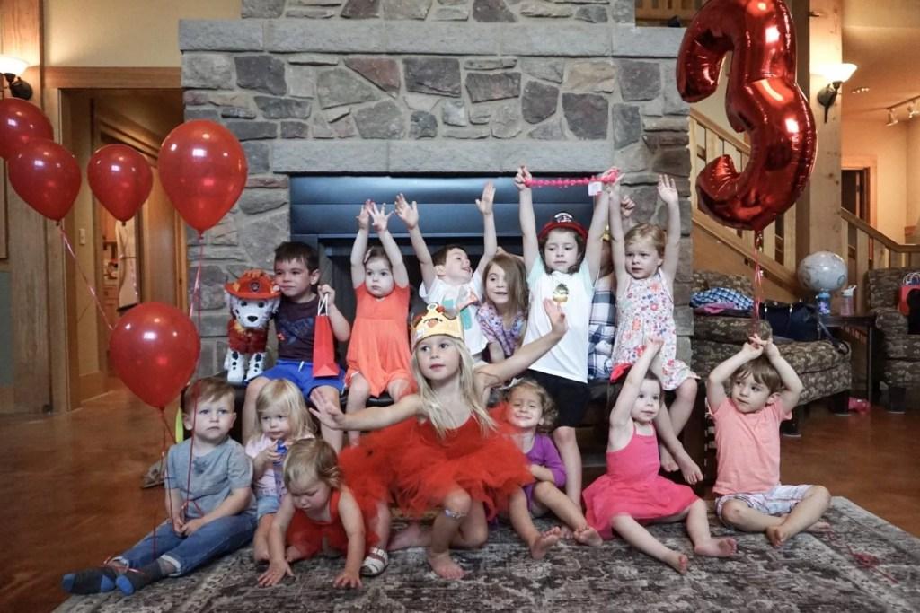 Paw Patrol Birthday Party, Children's Birthday Party, Girls Birthday, themed party