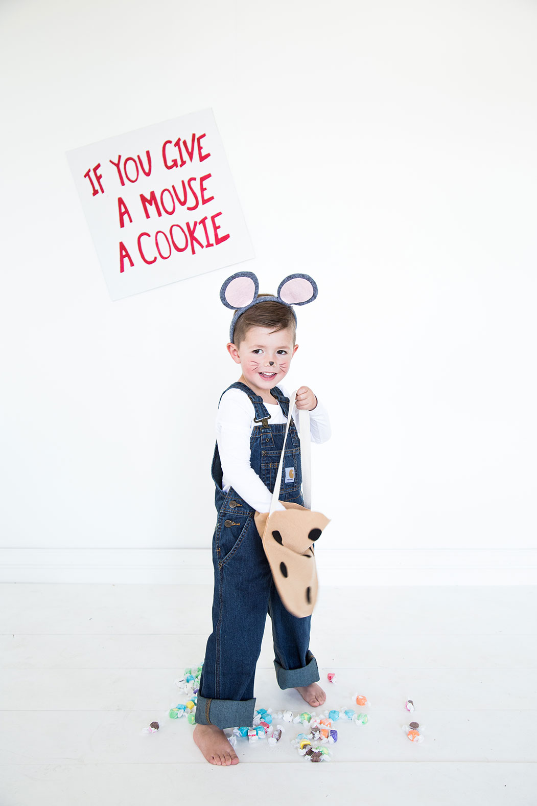 If You Give A Mouse A Cookie Costumes