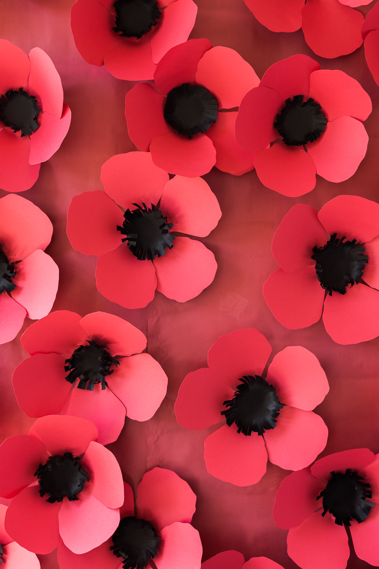 DIY Paper Poppy Backdrop The House That Lars Built