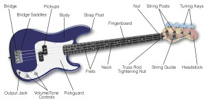 Buying Guide: How to Choose a Bass Guitar | The HUB
