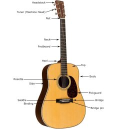 acoustic guitar anatomy and parts [ 1200 x 1200 Pixel ]