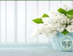 PWOC White Lily square