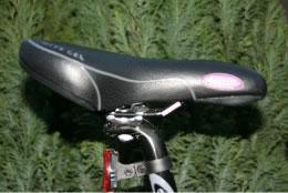 bike check4