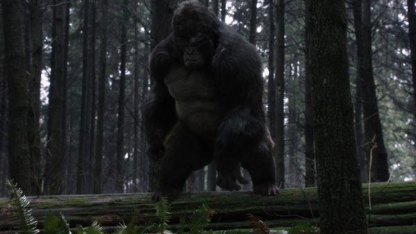 """The FlashBack: """"The Flash"""" – Episode 13 """"Attack on Gorilla City"""""""
