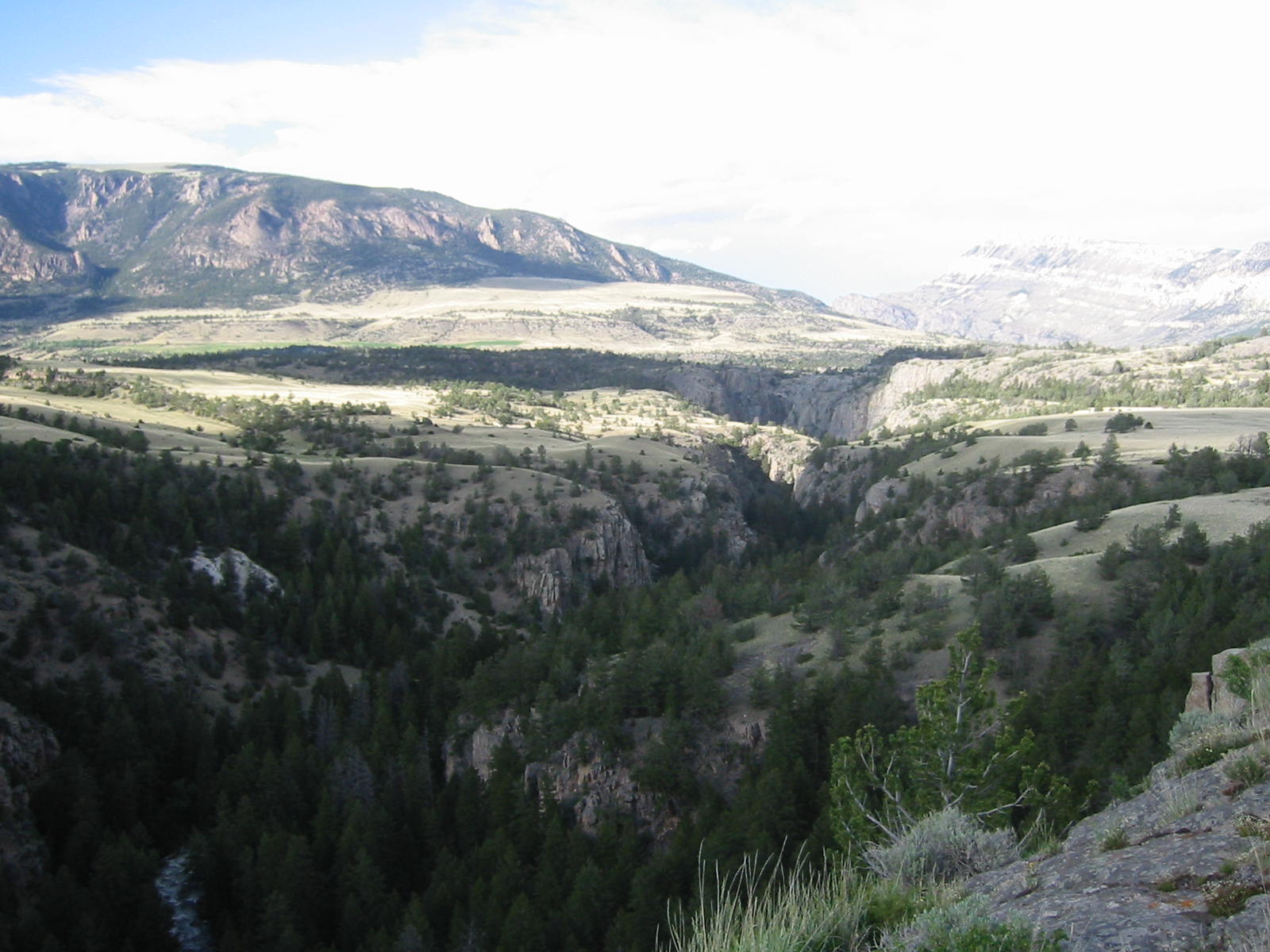 The flats above the gorge of the Clarks Fork
