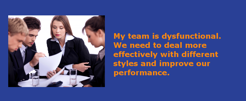 Team Effectiveness & High Performance