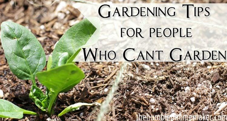 Garden Design Garden Design With Insanely Clever Gardening Tips