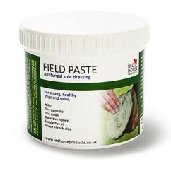 Field-Paste-Main