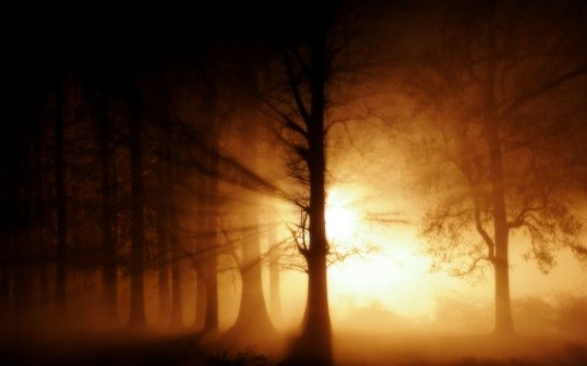 ghost-fog-wallpapers_128171