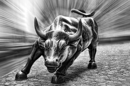 charging-bull-drawing-23