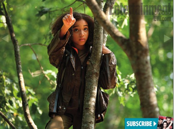 EW-photos-Rue