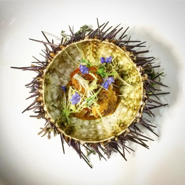 Sea-Urchin-Bowl