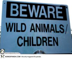 Funny-Signs-Wild-49