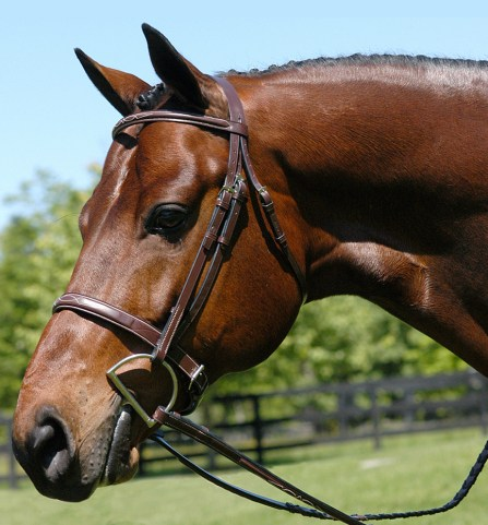 This image has an empty alt attribute; its file name is l-heritage-wide-noseband-bridle__51852.1489276094.1280.1280.jpg