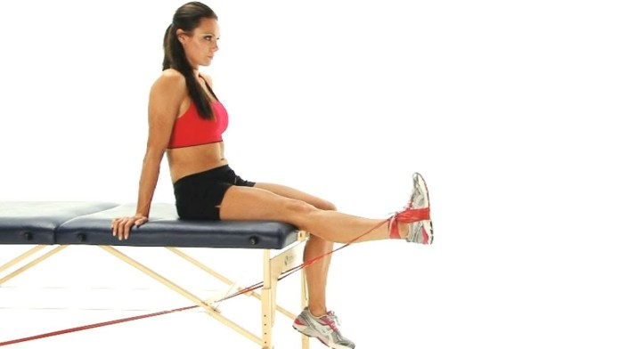 knee extension exercise for knees