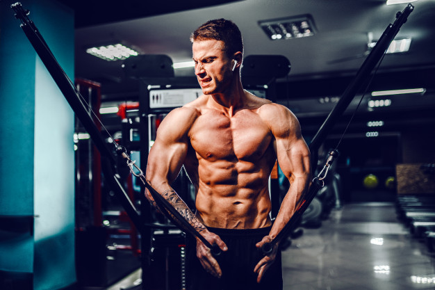 prone fly chest workout