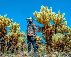 wayne-sutton-cactus