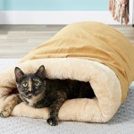 The Best Heated Cat Beds Of 2020 Reviews Guide