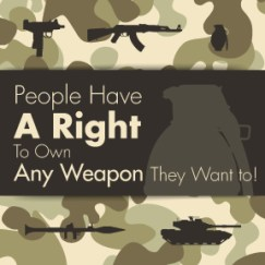 Constitutional-Right-To-Own-Firearms-3