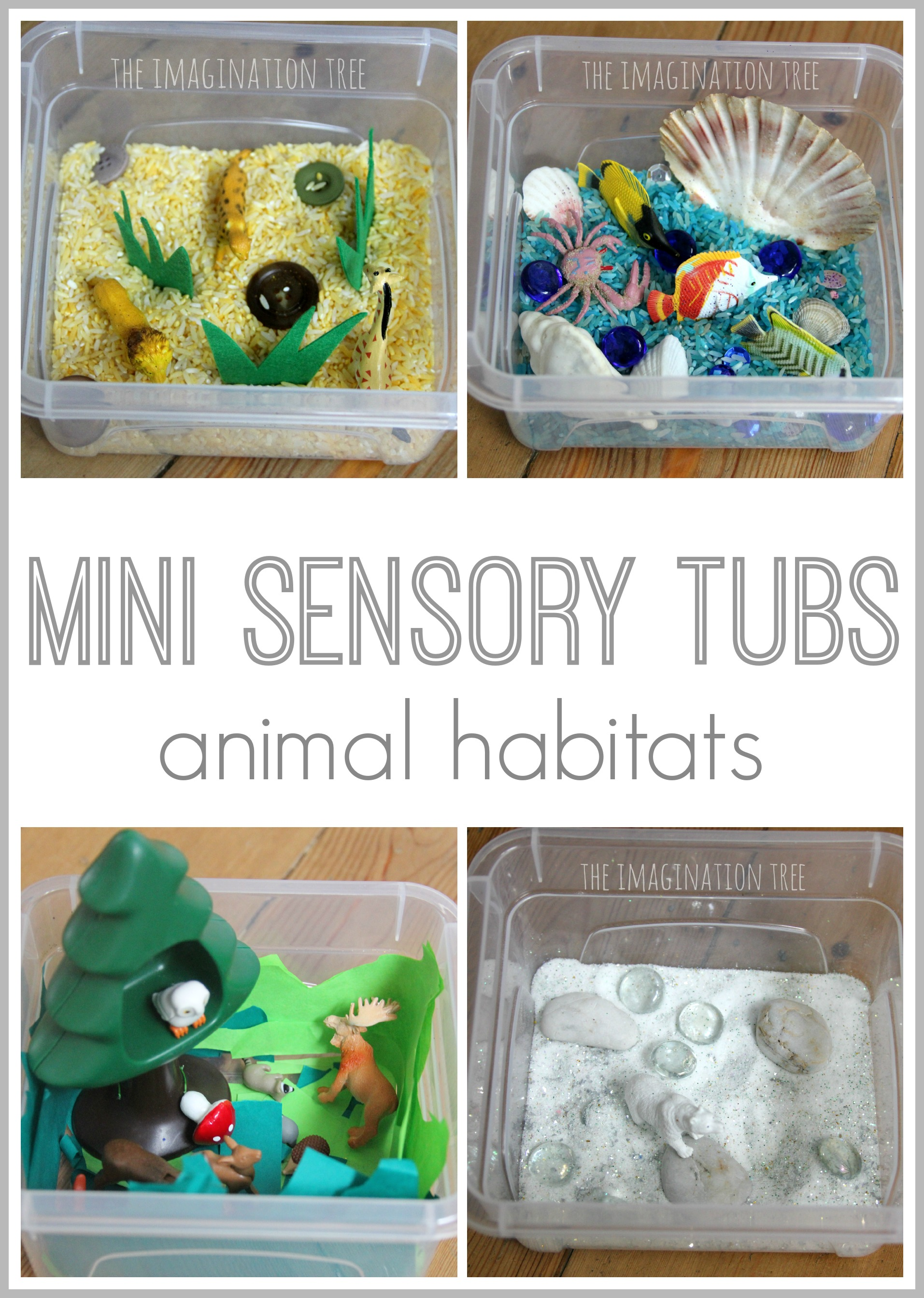 Animal Habitat Mini Sensory Tubs