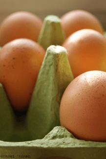 20) eggs