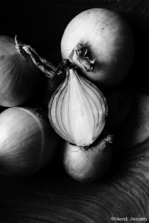 16) O is for Onion