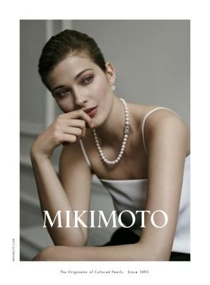 Mikimoto Modern Mansion 1
