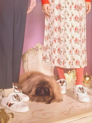 Gucci-year-of-the-dog-collection-the-impression-26