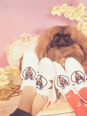 Gucci-year-of-the-dog-collection-the-impression-27