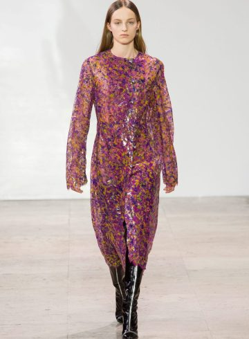 Ellery Fall 2017 Fashion Show