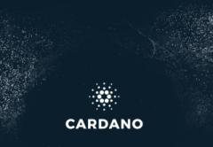 Cardano ADA Scale 2018