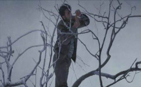 a man holding on to the dry branches of tree in snowed over weather