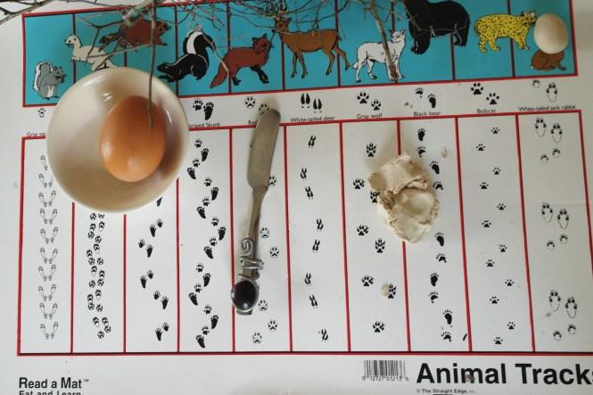 Clay Eggs materials